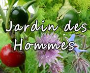 Jardins des hommes au CTH cultures de légume ancien