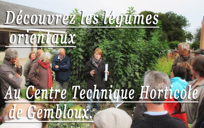 visites plantes comestibles gembloux cthgx cth 2013