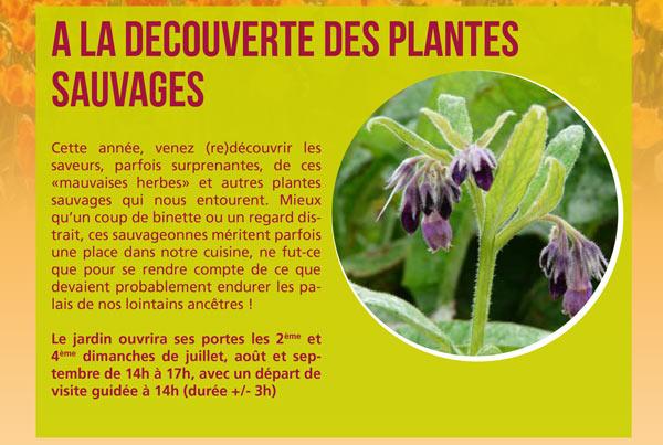 decouverte plantes sauvages gembloux cth 2014